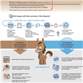 Infographics: Credit Card Dispute Process
