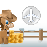 Airline Rewards Deals