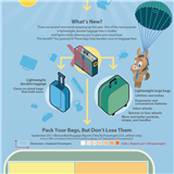 Infographics: Lost Baggage