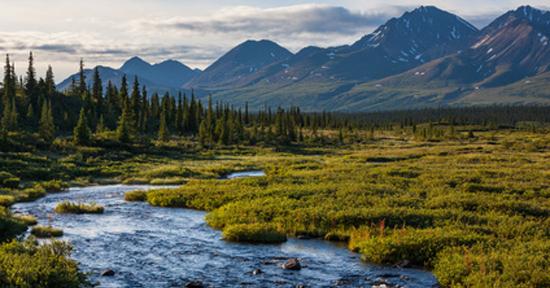 study best cities to live in alaska