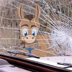 Does Car Insurance Cover Windshield Replacement