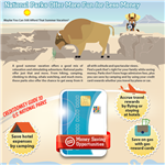 Infographics: National Parks