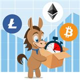 Cryptocurrency Adoption Rate