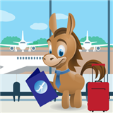 Airline Miles for Beginners