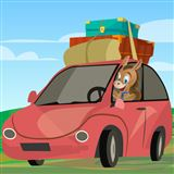 How Long Does it Take to Get Car Insurance