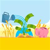 High Yield Savings