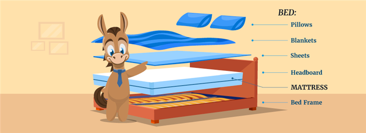 Differences Between Bed and Mattress