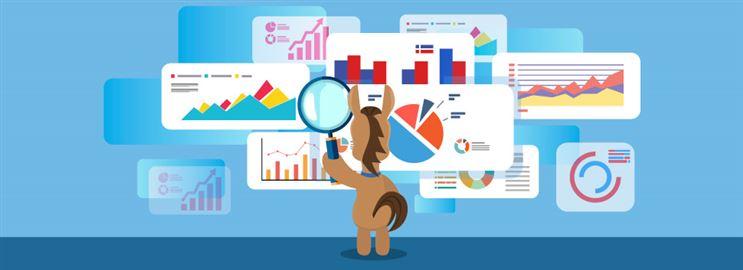 Best Portfolio Analyzers