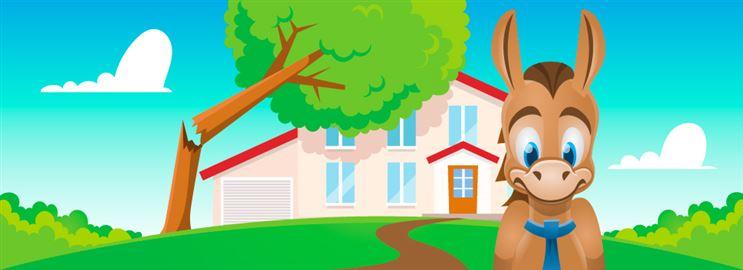 Best Homeowner's Insurance