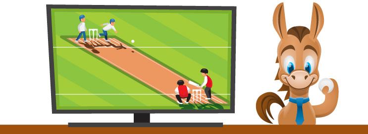 Best Ways to Watch Cricket Online in USA