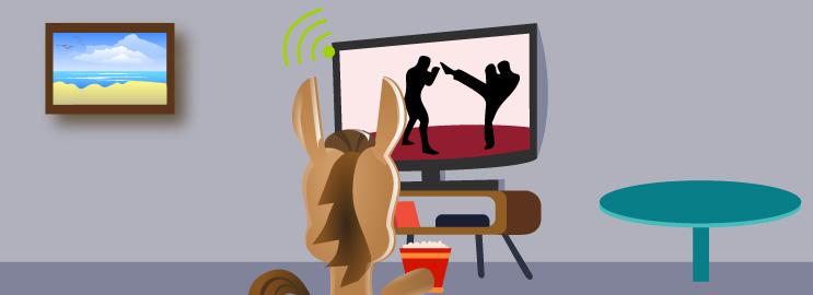 Best Ways to Watch UFC Online