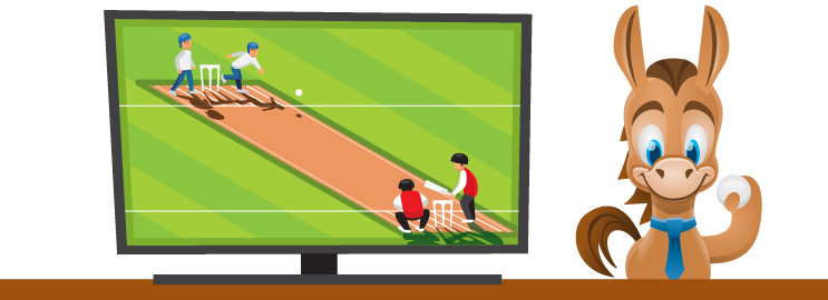 2019 Best Ways To Watch Cricket Online In Usa